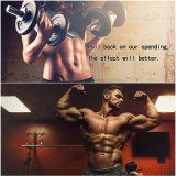 Fabricante do profissional do músculo da força e do ganho do pó de Undecanoate da testosterona
