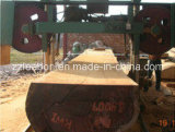 Bande en bois horizontale du meilleur prix concurrentiel la grande a vu la machine