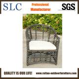 Meubles extérieurs de jardin de meubles réglés (SC-B8954)
