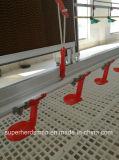 Alimentadores e bebedores automáticos de aves para produção de frangos de corte
