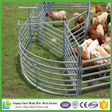 호주 표하기를 위한 직류 전기를 통한 가축 야드