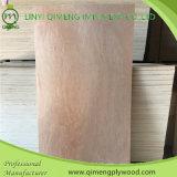 Excellent contre-plaqué de peau de trappe de Bintangor de qualité de Linyi