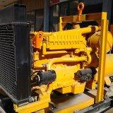 Biogas производя установленный электрический генератор электростанции двигателя Biogas
