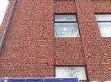 상업적인 건물 장식적인 외부 벽 도와 벽 벽돌
