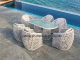 Популярная новая конструкция Wicker напольное Garaden обедая стул использующ для гостиницы с верхним качеством (YT1069)