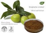 4%~60%の自然なオリーブ色の葉のエキスのOleuropein
