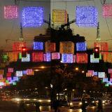 Свет шнура венчания партии СИД для украшения праздника празднества