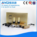 H7 SMD 크리 사람 LED 가벼운 자동 램프