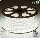 cinta de las luces de tira de 220V LED 5050 SMD LED para las decoraciones al aire libre
