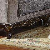 販売でセットされるアメリカのソファーの居間のソファ