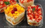 Caixa de bolo descartável de Melaleuca da fruta