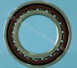 Rolamento de esferas angular do contato, rolamento do rolamento, auto peças sobresselentes (SF4007PX1)