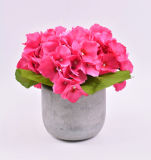 Flores grandes artificiales del Hydrangea en el crisol del cemento para la decoración