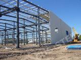 Edifício da construção/vertente de aço claros da galinha construção de aço