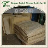포플라/박달나무 나무로 되는 침대 판금