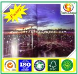 Papel de arte lustroso quente 100g do sell C2S
