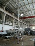 De veilige SGS Overgegaane Steiger van het Frame van de Metselaar voor Decoratie
