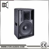 10 het duim Aangedreven Systeem van de Spreker van de Volledige Waaier van de Spreker van de PA Stereo