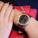 Madame montre de montre de 359 femmes de Yazole belle de cristal de caisse de luxe de décoration
