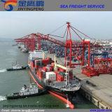 Agente dos serviços de transporte/remetente de frete de China a Londres