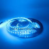 IP65 impermeabilizzano la lampada della striscia di 600LEDs 2835 LED
