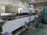 Linha de Processling da microplaqueta do descanso (capacidade: 1000kg/h)