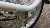 3つの車輪の電気貨物バイク、大人のための小屋が付いている電気三輪車