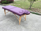 Vector portable para la hembra, vector femenino del masaje del masaje