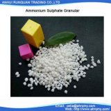 Granuliertes 2-5mm/N 20.5% Düngemittel des Ammonium-Sulfat-Vertrags-/grosse Verkäufe