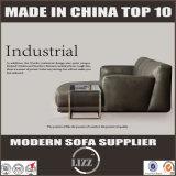 Gehäuse-Möbel-Leder-Feder-Sofa von Australien für Wohnzimmer