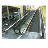Prix d'ascenseur extérieur d'intérieur sûr de passager de promenade mobile bon