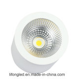 De LEIDENE van het Lichaam CREE van de Lamp van het Aluminium van de cilinder 30W Opgezette Oppervlakte van Downlight