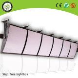Caja delgada de luz LED Publicidad Caja de luz LED de la placa del Menú