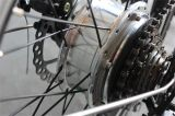 E-Bici piegante poco costosa della batteria di litio di Jsl 250W 36V con Ce (JSL039X)