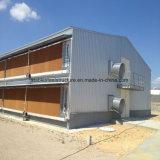 Casa Automática Prefabricada de Aves de Pollo con Mejor Diseño