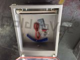 Vakuumabdichtmasse, Vakuummaschine für Nahrung, Qualitäts-Vakuummaschine