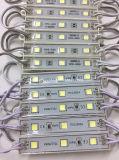 12V SMD 5050 illuminazione del segno dei 3 LED