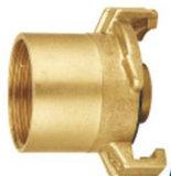 Las instalaciones de tuberías de cobre amarillo de alta calidad modificadas para requisitos particulares (EM-F-219)