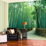 Impresión al aire libre personalizada de los murales del papel pintado de la escena de los gráficos vivos impermeables