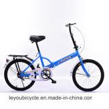 싼 탄소 소형 접히는 자전거 (ly 73)