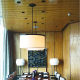 Het speciale Plafond van het Comité van het Aluminium van het Ontwerp met SGS voor Binnenhuisarchitectuur