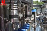 Planta de embotellamiento del agua/equipo purificados