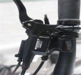 E-Bicyclette en aluminium de montagne de bâti de 36V 250W 700c avec du ce (JSL037G-4)