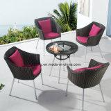 Cadeira interna ao ar livre do Rattan da cadeira do café da cadeira popular nova do café do pátio do projeto