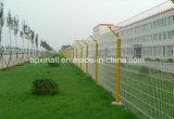 구부려진 산업 담 PVC에 의하여 입히는 용접된 철망사 위원회