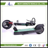 専門家10inch 2の車輪のスクーター