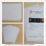 Impresión seca blanca de la película de la imagen de Gastroscopy Ultrsound de la inyección de tinta