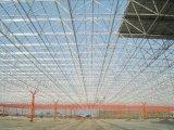 Telhado do frame do espaço da construção de aço da grande extensão