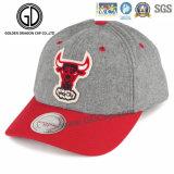 2016 der Qualitäts-Wolle-Basketball Sports Hysteresen-Schutzkappe mit Stickerei