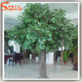Árvore de Banyan artificial interna do Ficus do fabricante de China mini